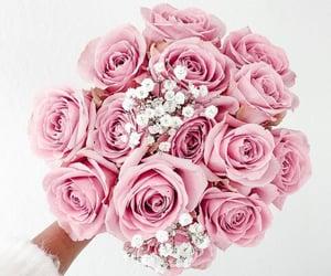 beauty, rose, and fashion image