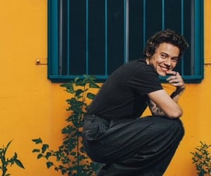 aesthetic, yellow, and Harry Styles image
