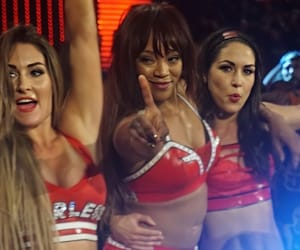 wwe, alicia fox, and brie bella image