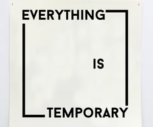 everything, temporary, and mots image