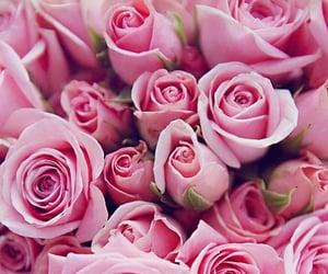 beautiful, fresh, and pinky image