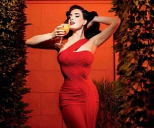 Dita von Teese, Pin Up, and red image
