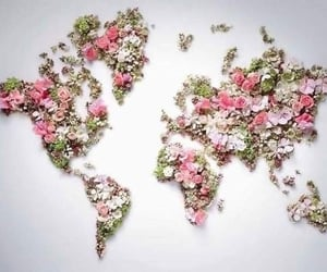 beautiful, flowers, and earth image