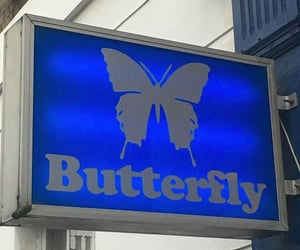 butterfly, aesthetic, and alternative image