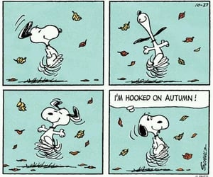 funny, peanuts, and snoopy image