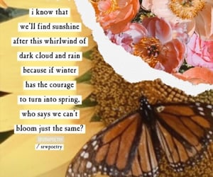 bloom, life, and quote image
