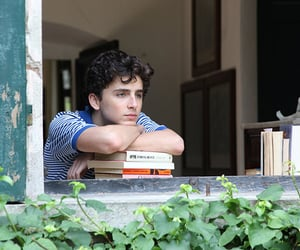 article, lady bird, and call me by your name image