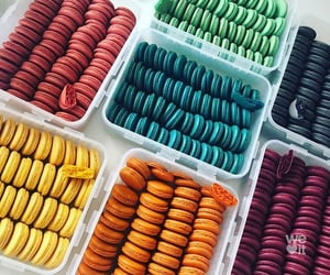 colors, macaroons, and sweet image