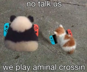 animal crossing and meme image