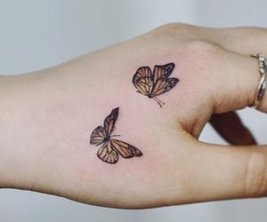 art, butterflies, and butterfly image
