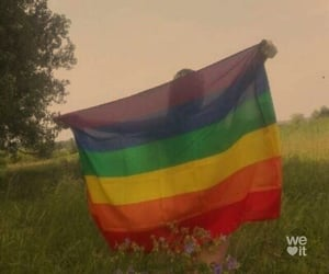 article, articles, and lgbtq image