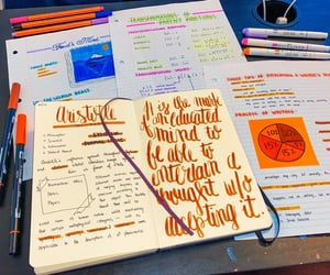 calligraphy, journal, and notes image