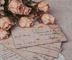 vintage, rose, and letters image