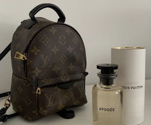 aesthetic, bag, and Louis Vuitton image