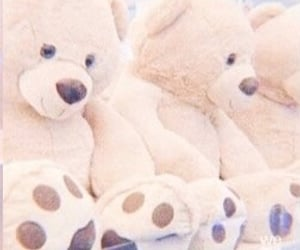 soft, aesthetic, and bear image