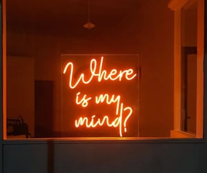 quotes, neon, and aesthetic image