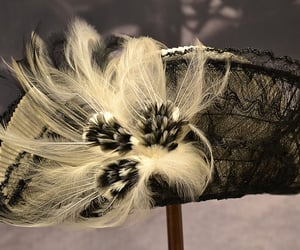 costume, fashion, and feathers image