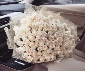 aesthetic, beautiful, and flowers image