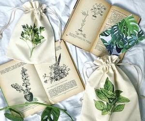 bag, books, and plants image