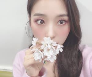 dreamcatcher, korean, and pretty image