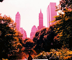 new york, pink, and city image