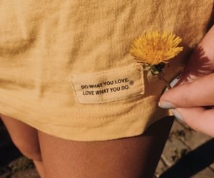 carefree, Sunny, and vsco image