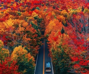 car, colorful, and landscape image