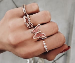 butterfly, hands, and rings image