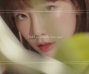 four seasons, love, and korea image