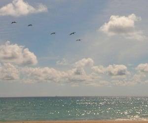 sea, sky, and soft image