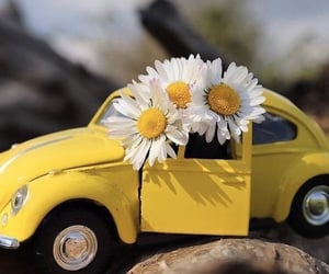 car, flowers, and vw image