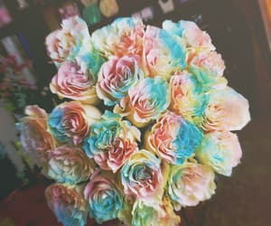bouquet, colorful, and flowers image