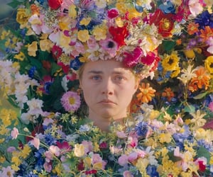 midsommar and film image