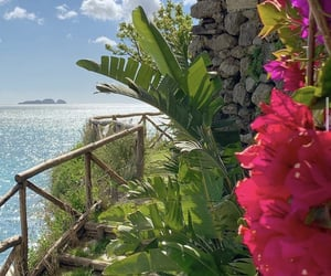 tropical, flowers, and aesthetic image