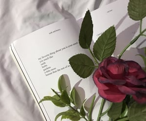 book, poem, and poetry image