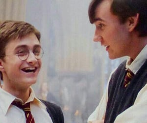 harry potter, neville longbottom, and daniel radcliffe image
