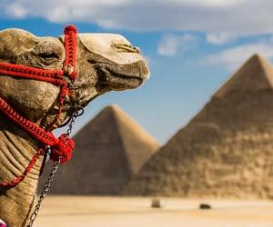 egypttourism image