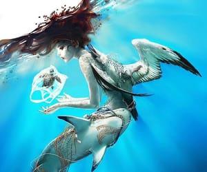 albatross, mermaid, and beauty image