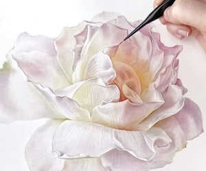 aesthetic, rose, and art image
