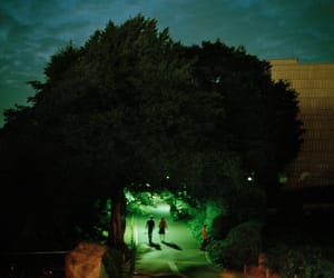 aesthetic, lights, and tree image