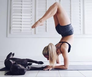 dog, girl, and yoga image