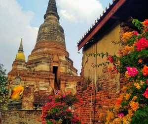 Bouddha, thailand, and travel image
