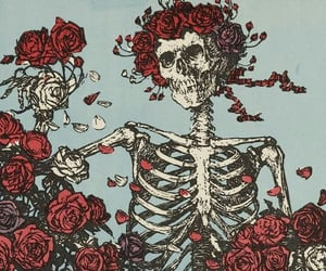 rose, flowers, and skeleton image