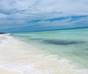 beach, ocean, and méxico image