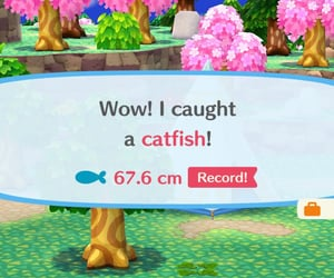 animal crossing, games, and humour image