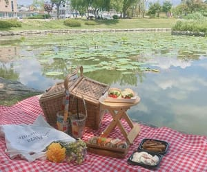 picnic and soft image