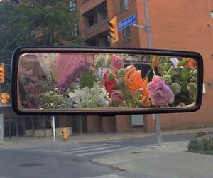 flowers, aesthetic, and car image
