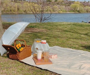aesthetic, date, and picnic image