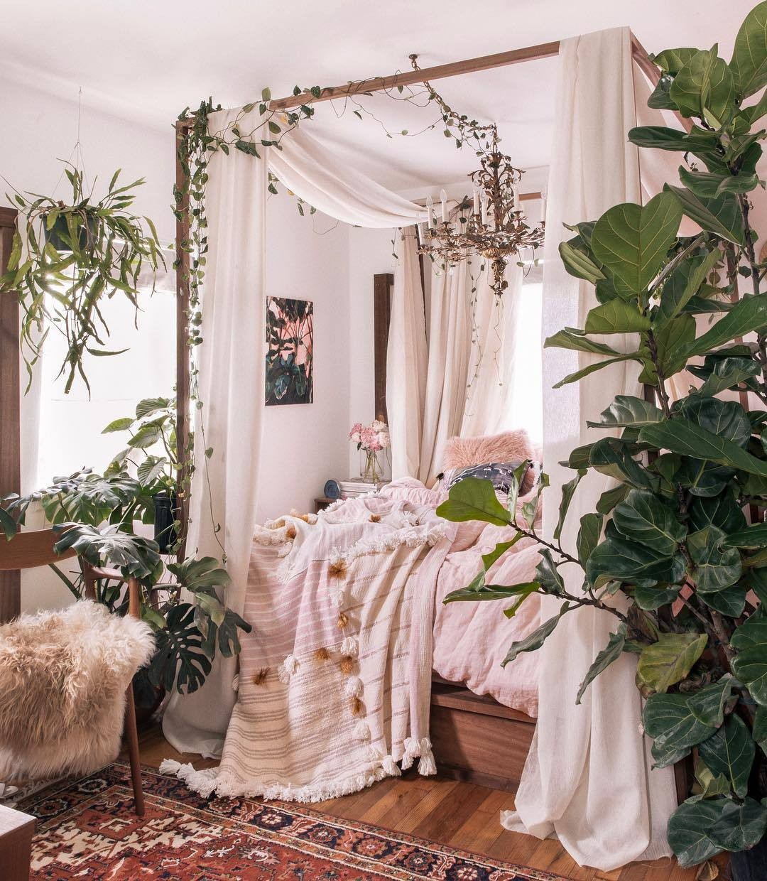 article, cozy, and plants image