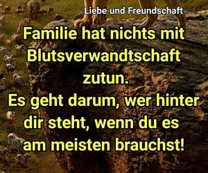 blut, deutsch, and family image